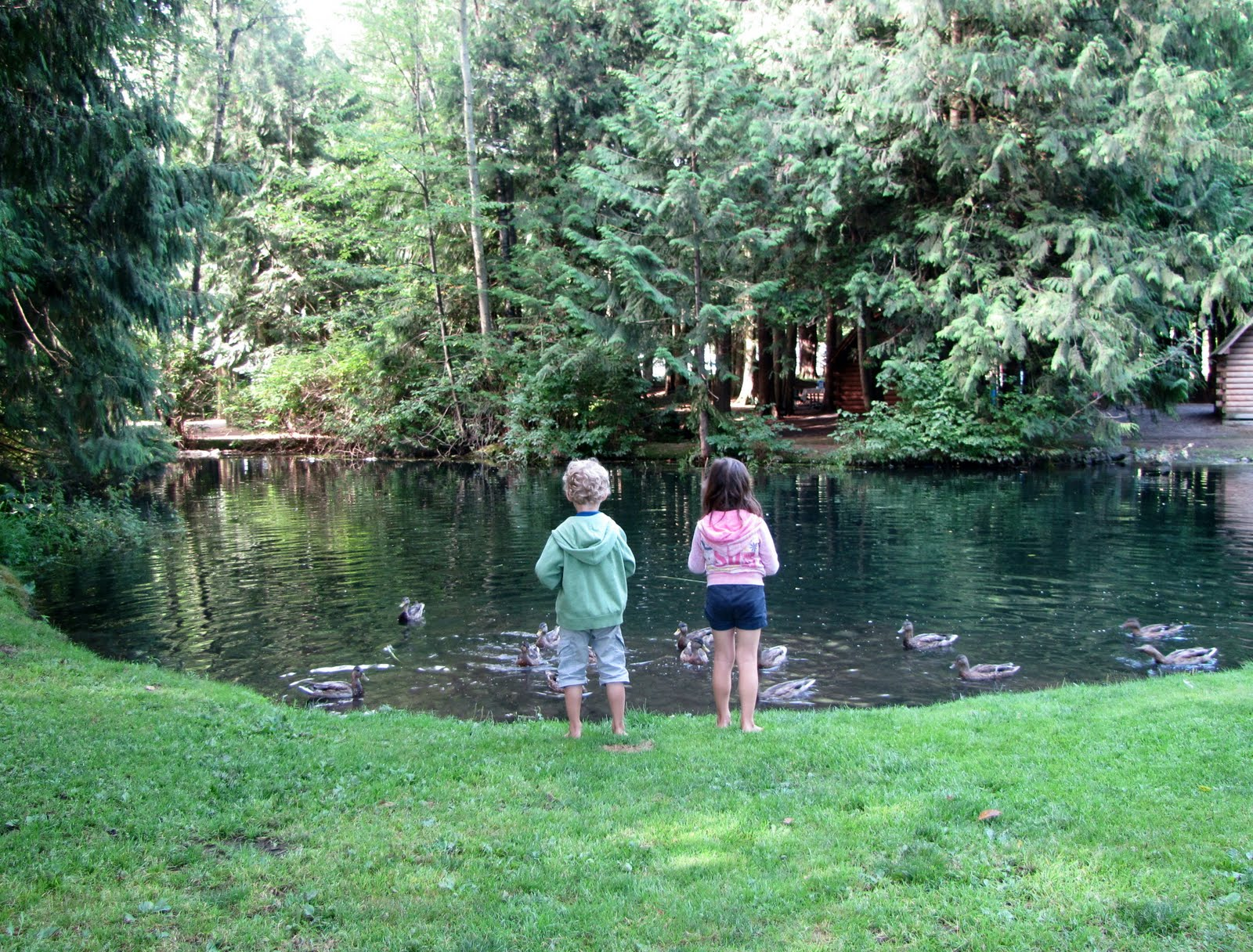 Does it get any cuter than this? Come on, ducks, kids, a pond, in the woods. The only thing missing is YOU!